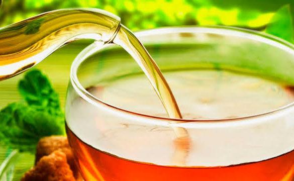 Os principais benefícios do Bem Chá bem