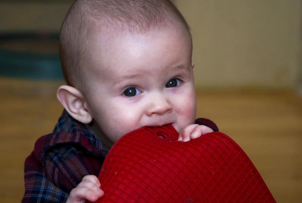 ao começar a levar objetos à boca, o bebê demonstra que já está pronto para pegar as frutas e vegetais com a mão