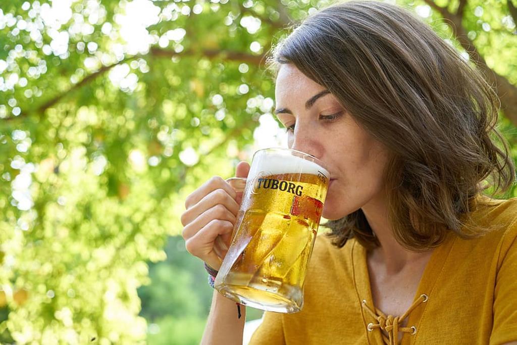 grávida pode beber cerveja