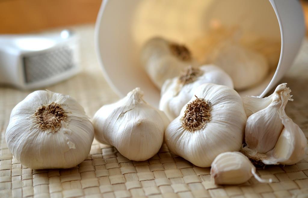 o alho é um potente antioxidante natural que ajuda a regular a pressão alta