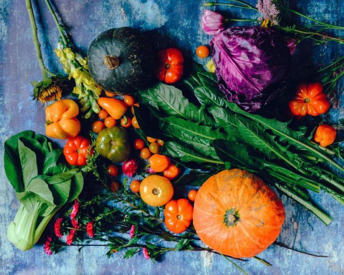 o consumo de alimentos ricos em vitaminas, fibras e minerais ajuda na saúde do intestino
