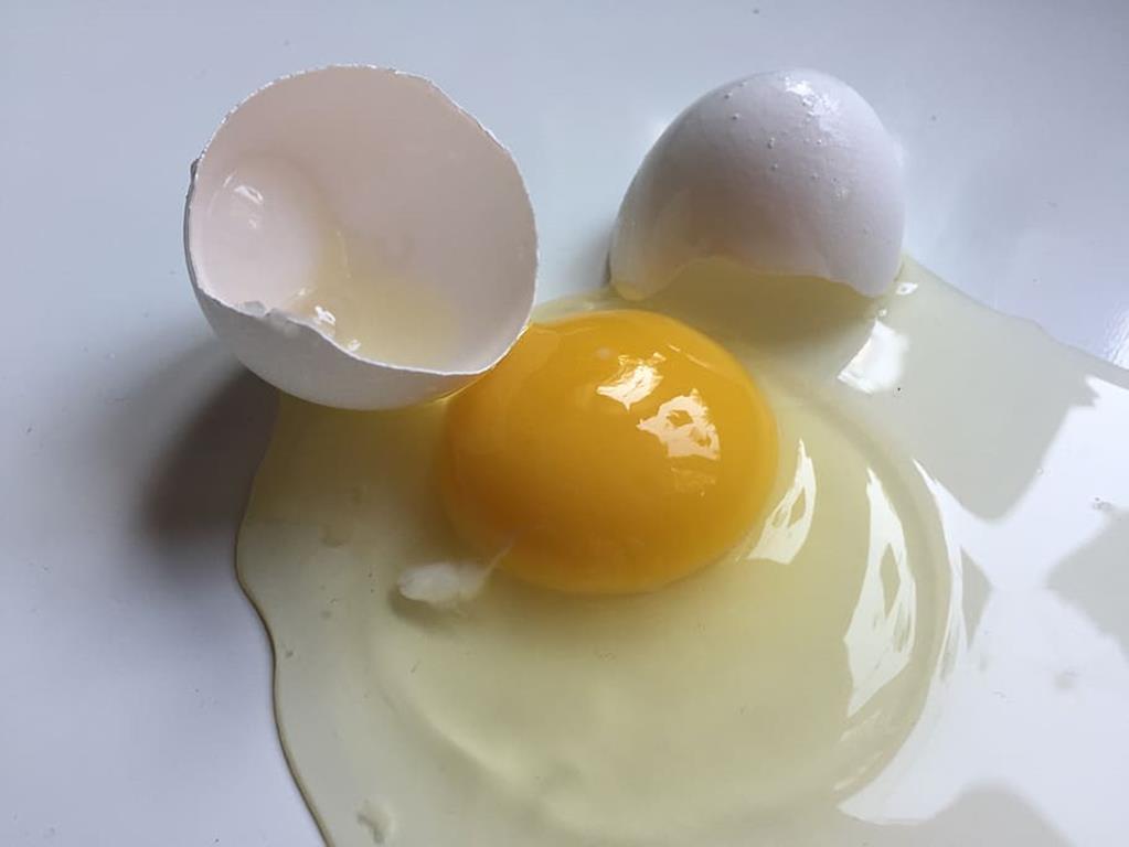 indivíduos com alergia à proteína do ovo deve consultar seu médico antes de tomar a vacina, que não deve ser administrada em casos de alergias graves