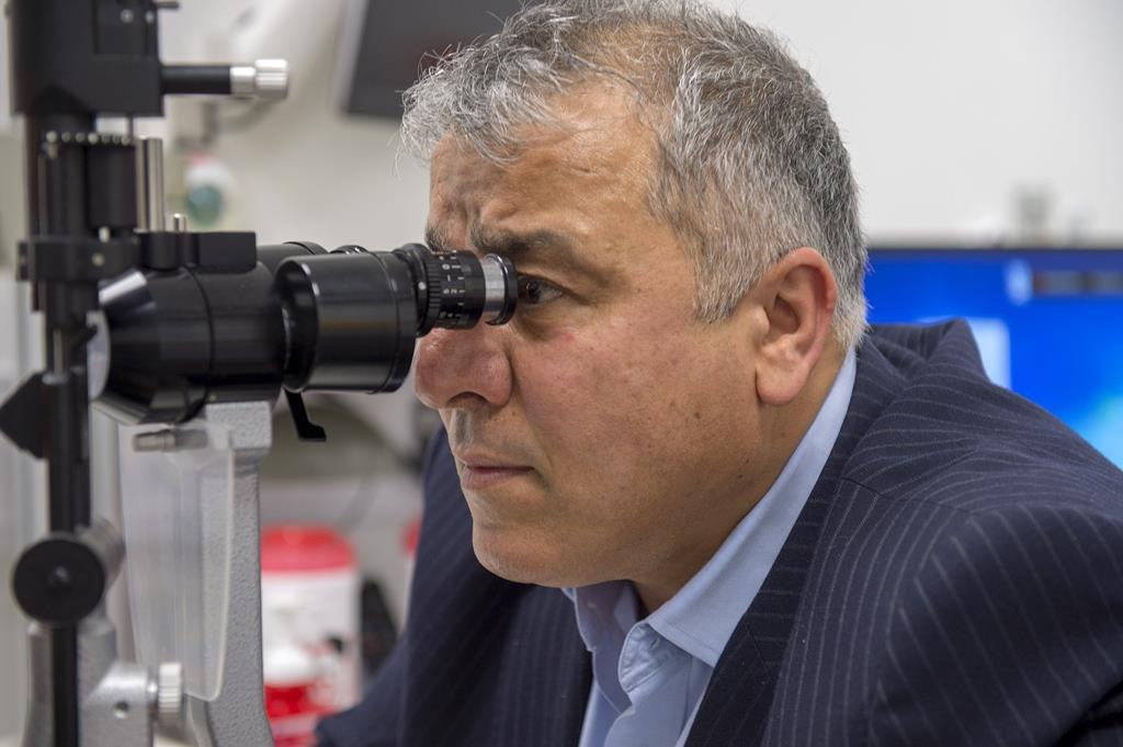 doses adequadas da vitamina pode ajudar na prevenção de doenças oftalmológicas
