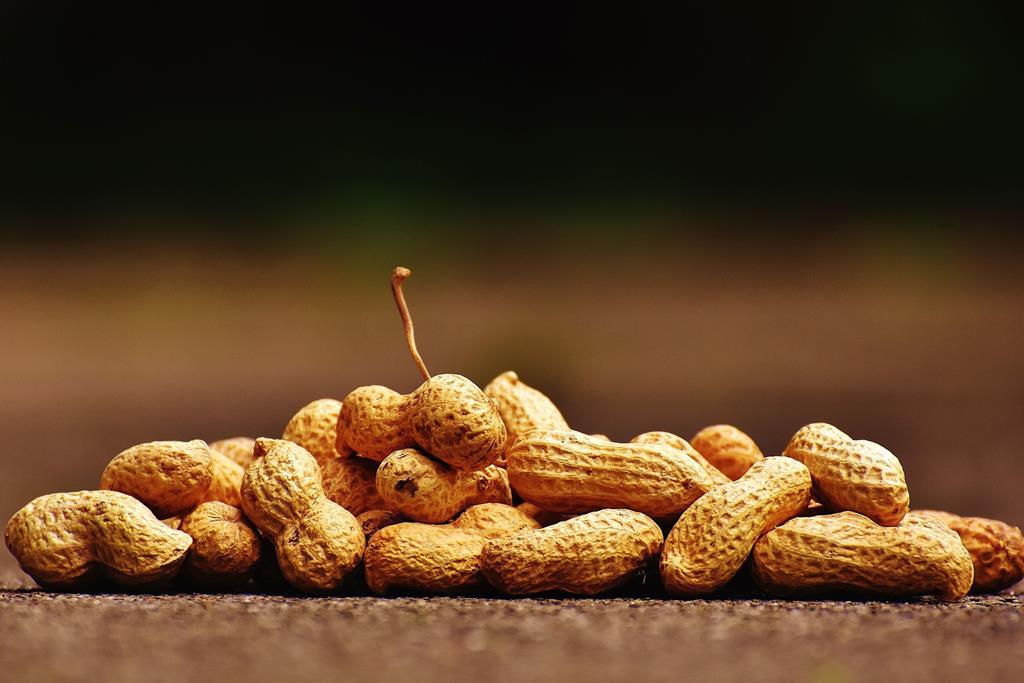 o amendoim é rico em gordura boa que ajuda a limpar as artérias